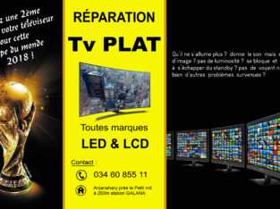 REPARATION TV PLAT A MADAGASCAR